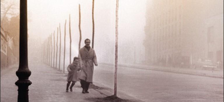 """Carlos Ruiz Zafón: """"Der Schatten des Windes"""""""